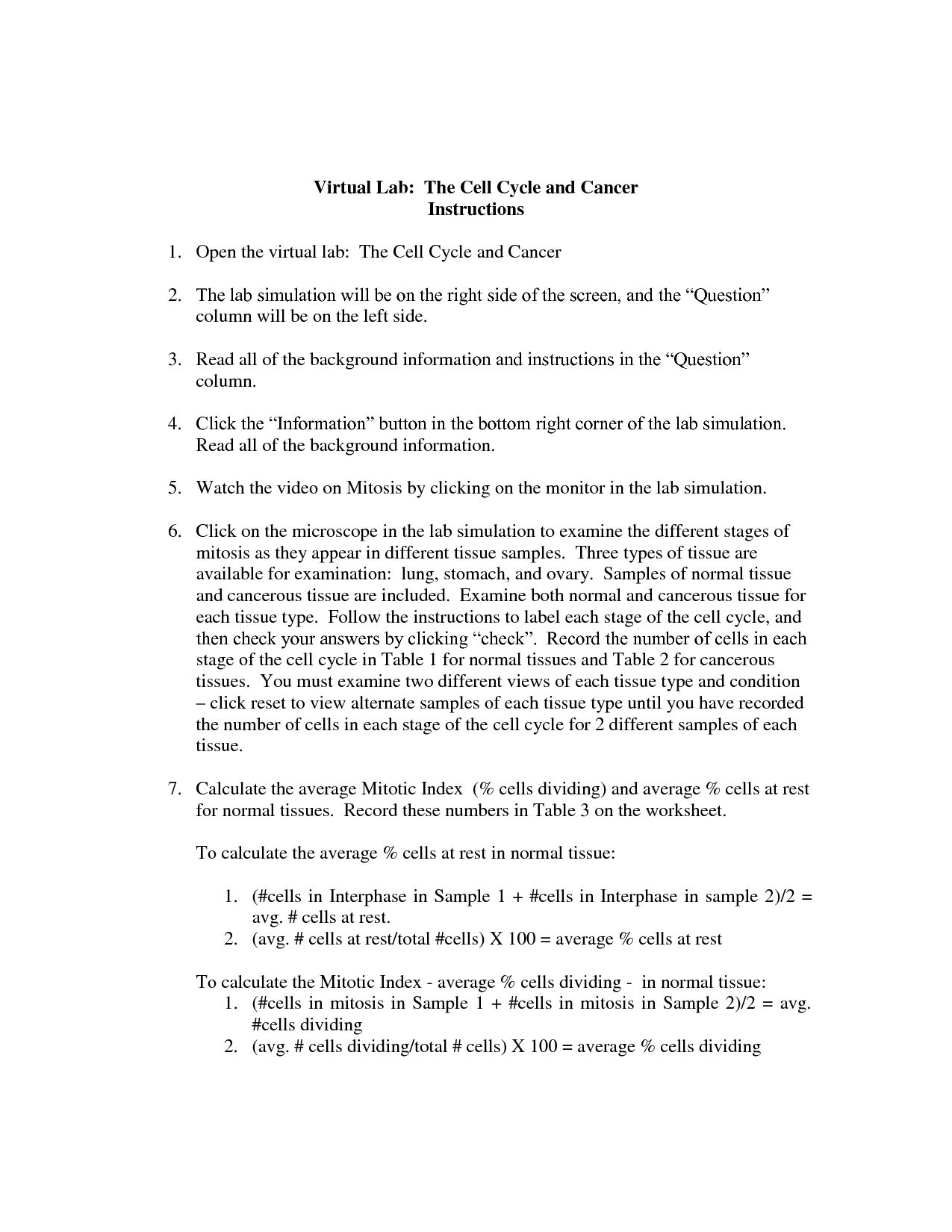 Virtual Lab The Cell Cycle And Cancer Worksheet Answers