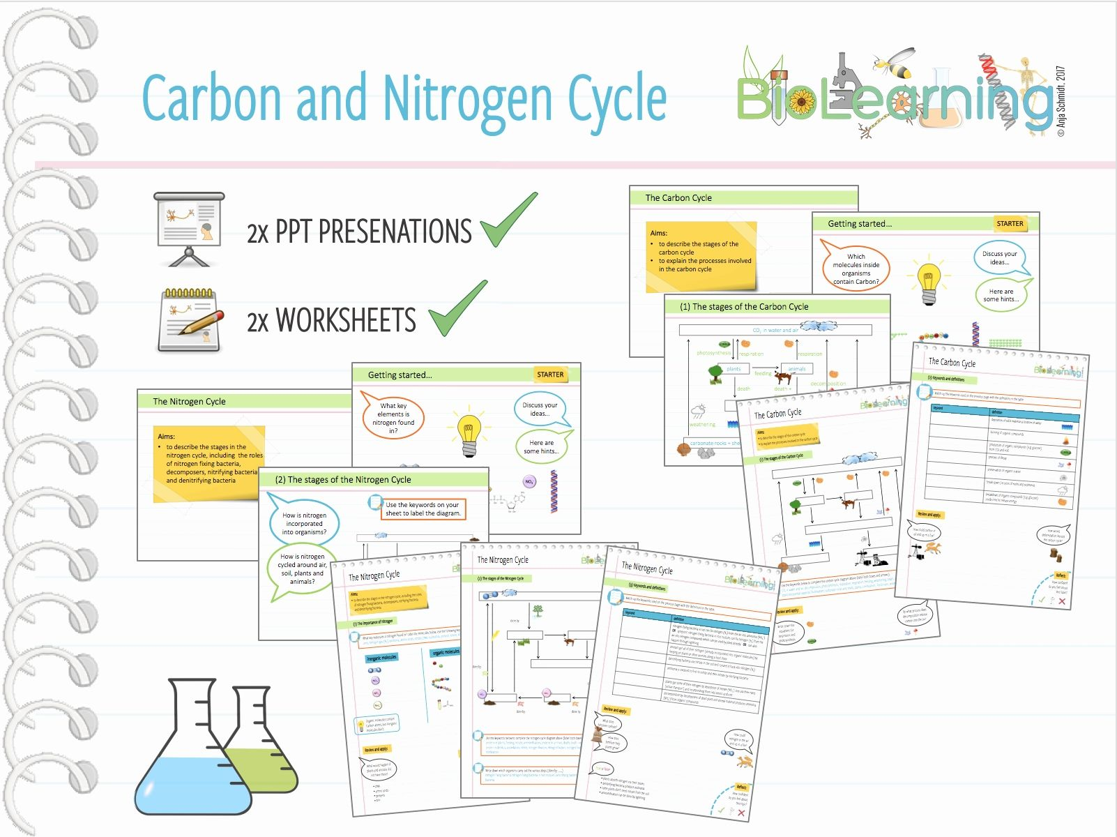 Water Carbon Nitrogen Cycle Worksheet Answers