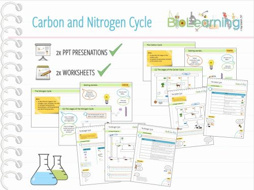small resolution of water carbon and nitrogen cycle worksheet answers nitrogen cycle diagram worksheet inspirationa 4x carbon and nitrogen
