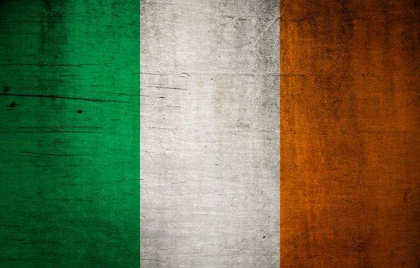 Modest Proposal Irish Border Richard Tuck