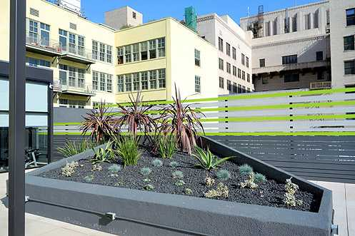 Rooftop drought tolerant garden (and gym to the left side)