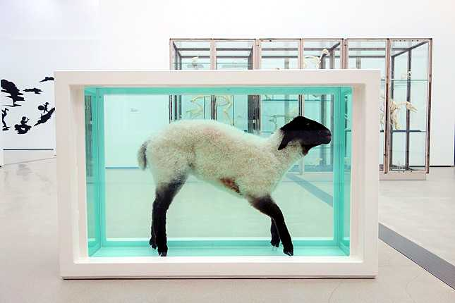 Damien Hirst's Away from the Flock (1994) sheep suspended in formaldehyde