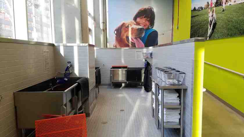 New petco store opens in south park in downtown la i love the 10 self wash dog stations at petco solutioingenieria Choice Image