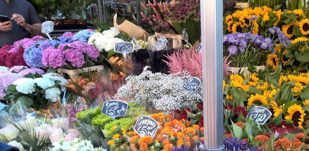 columbia road bright flowers