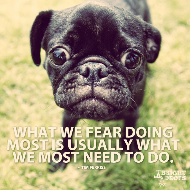 """What we fear doing most is usually what we most need to do."" ~Tim Ferriss"