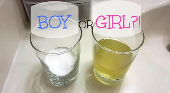 Homemade pregnancy test picture 2 - gender test with baking soda