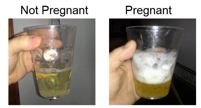 Homemade pregnancy test with bleach