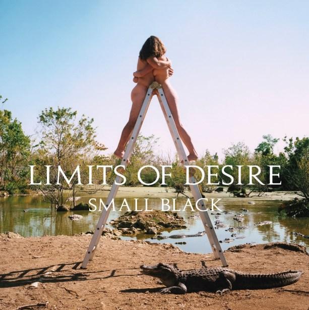 05-08-Discs-Small-Black-Limits-of-Desire