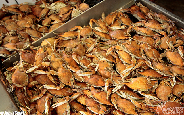 crabpic