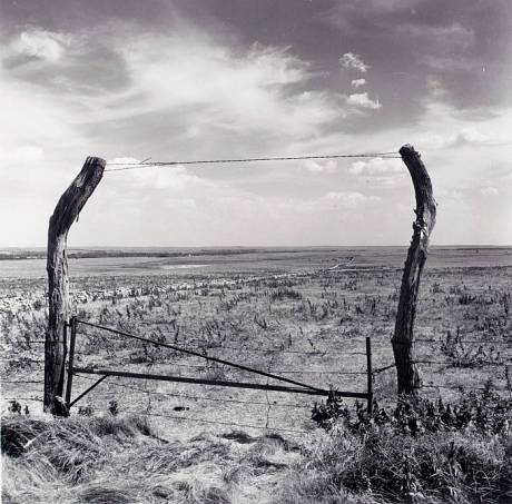 Flint Hills, Marion County, from the Kansas Documentary Survey Project 1974 Larry W. Schwarm Born: Larned, Kansas 1944 gelatin silver print image: 6 7/8 x 7 in. (17.6 x 17.9 cm) Smithsonian American Art Museum Transfer from the National Endowment for the Arts © 1974, Larry W. Schwarm 1983.63.1193 Smithsonian American Art Museum 2nd Floor, South Wing