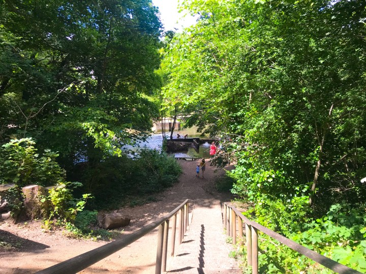 The steps down to Wickham Water Meadows