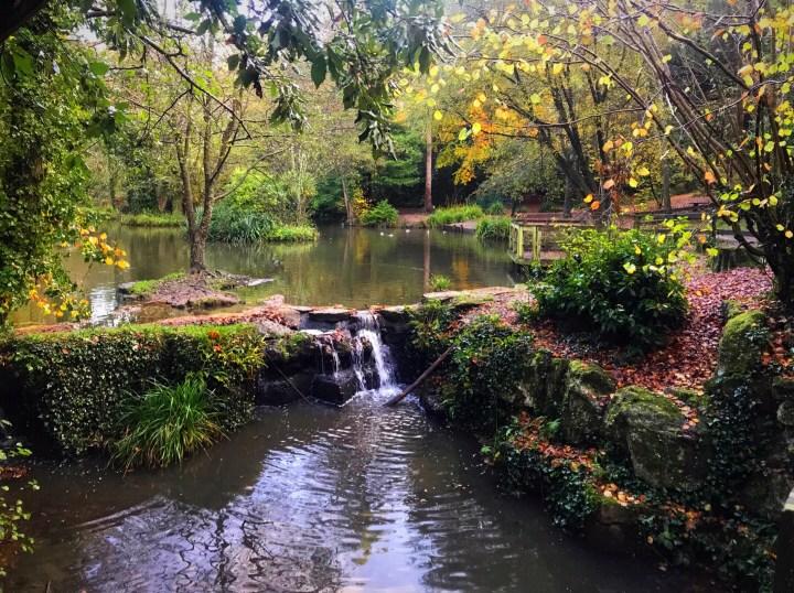The main lake at Holly Hill Woodland Park