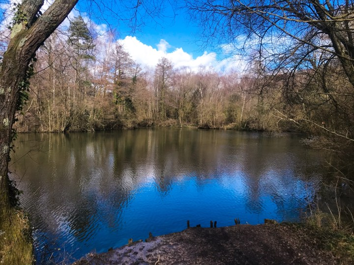 One of the biggest lakes at Swanick Lakes Nature Reserve