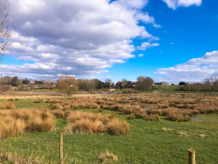 The Walk alongside Titchfield Canal