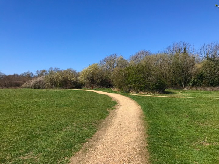 The path around the edge of the central field at Warsash Nature Reserve