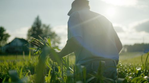 Food waste: A farmer at work. From the film's website