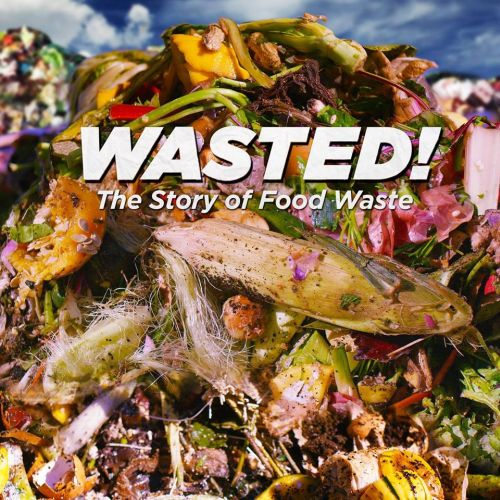 Food waste: Official poster for Wasted! From the film's website