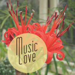 Music love graphic