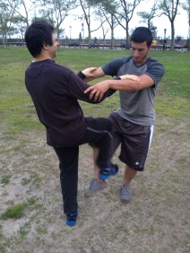 Wing Chun Training 2014 05 15_04