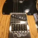 Brushed-Steel-Tele-EverTune