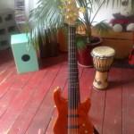 Five String Semi-Fretless Custom Bass