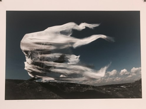 Antti Sorva, Aeolus, God of the Winds, 2007, €400