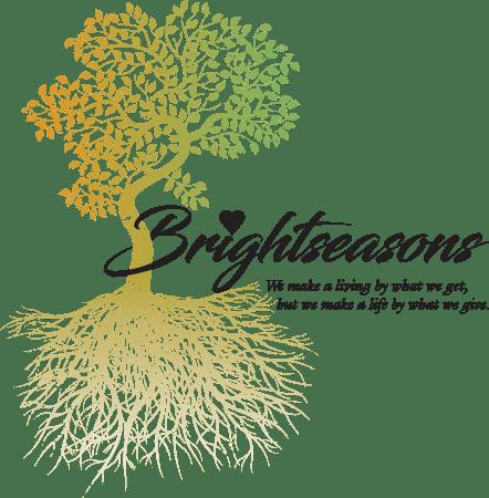Brightseasons-Logo-1.png