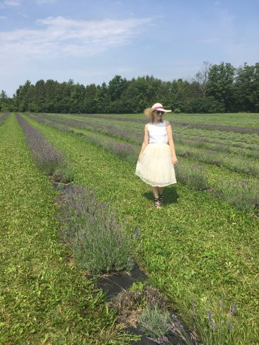 Lavender Field Outfit