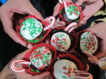 Vegan Cupcakes