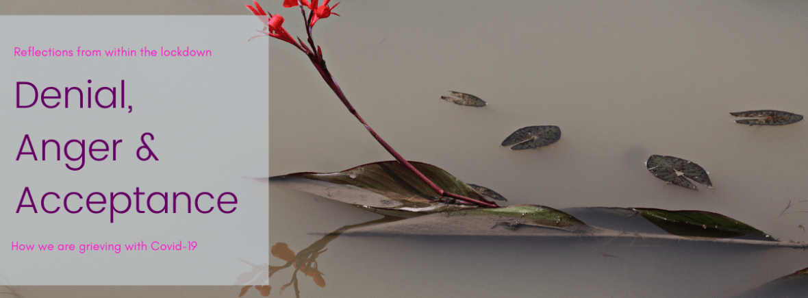 The title photograph of a red flower floating on cloudy water. With the title Denial, Anger & Acceptance.
