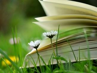 12本值得一读的英文好书