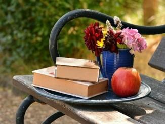 读经典小说学写作