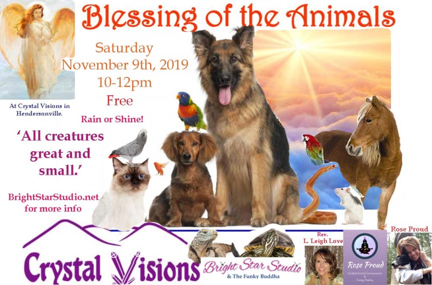BlessingOfAnimals Crystal Visions Nov 2019