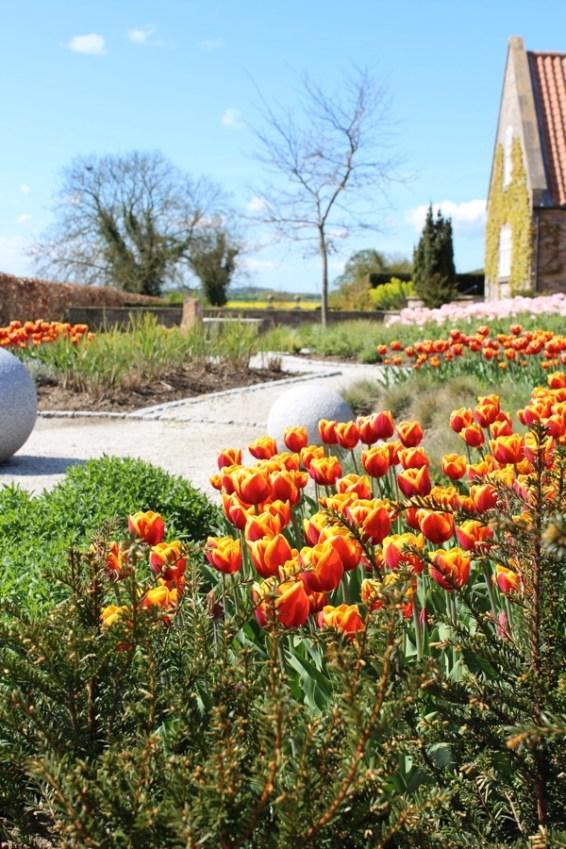 brightwater gardens april blog 10