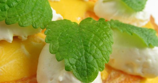 Mint Herb Dessert