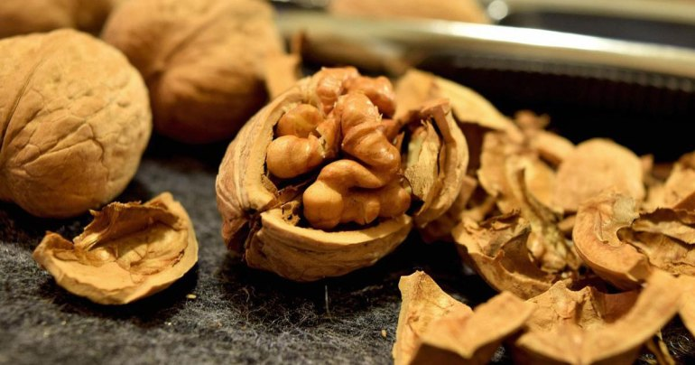 Walnut Drupes
