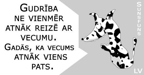 kertais_suns_funs_nr2