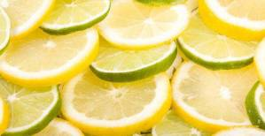 lemons-and-limes-james-bo-insogna