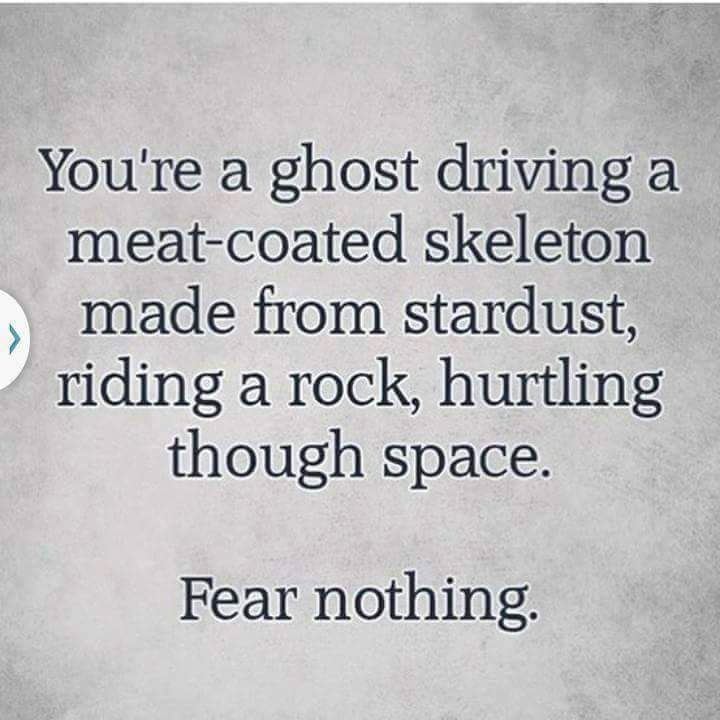 Why you should 'Fear Nothing'