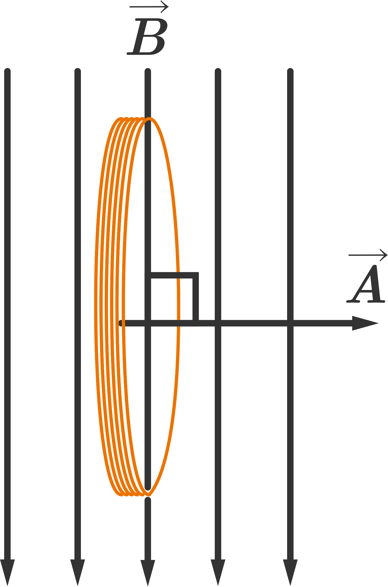 hight resolution of a coil of wire in a vertical magnetic field the area vector