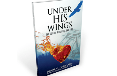 Under His Wings – Deborah Williams