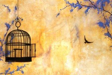 Free Bird Canvas Art by my sister, Cristi B