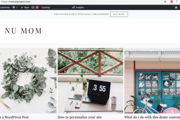 Starting a blog: example Nu Mom Restore 316