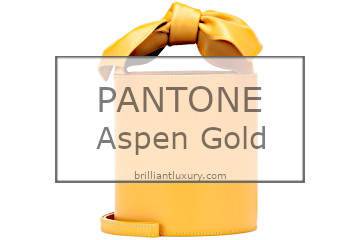 Pantone Fashion Color 2019 Aspen Gold Bags