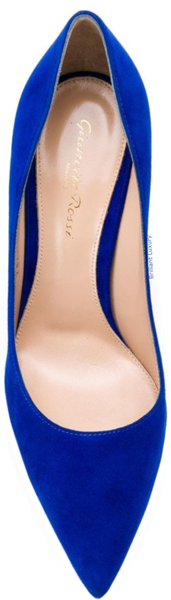 Gianvito Rossi pointed pumps in blue