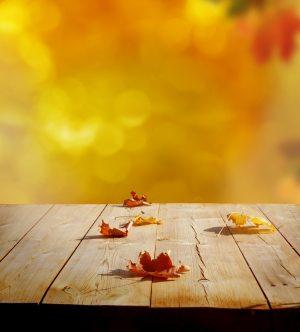 autumnleavesweb