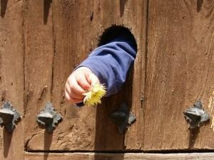 Child reaching a flower through a door