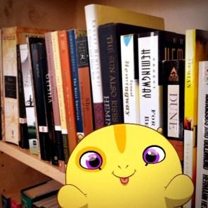 playing amongst my books