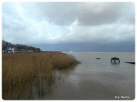 Au loin le port de Pauillac
