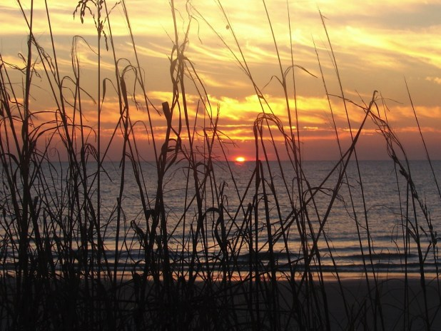 Myrtle Beach Sun